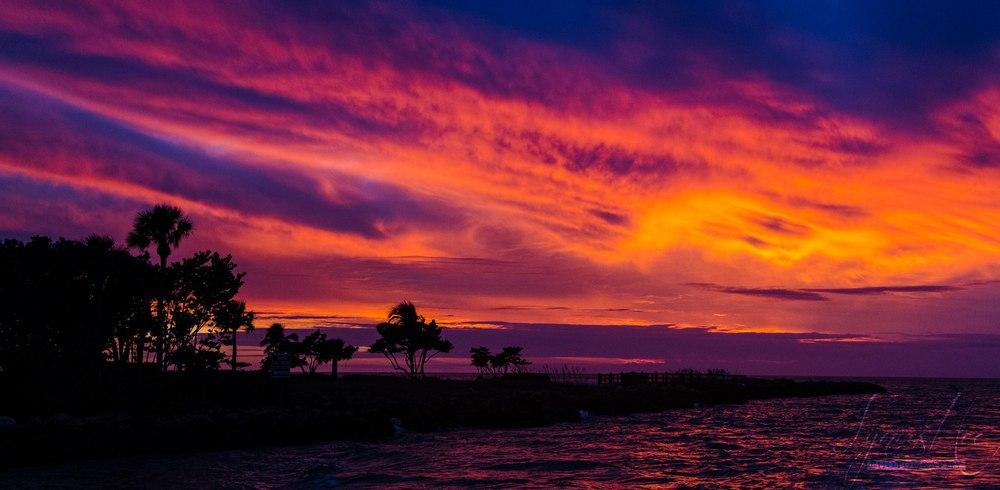 Cape Coral 002.jpg