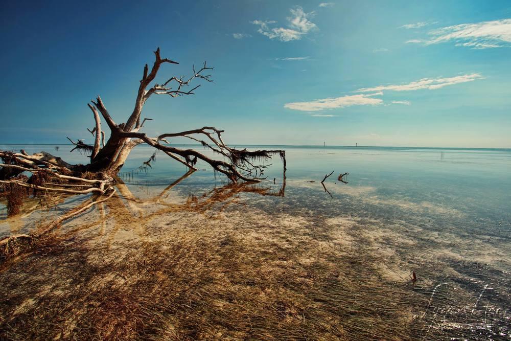 Florida Keys 002.jpg