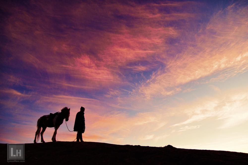 Horseman at Dawn