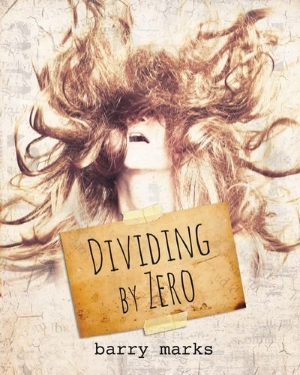 Dividing by Zero cover - designed by megan cary