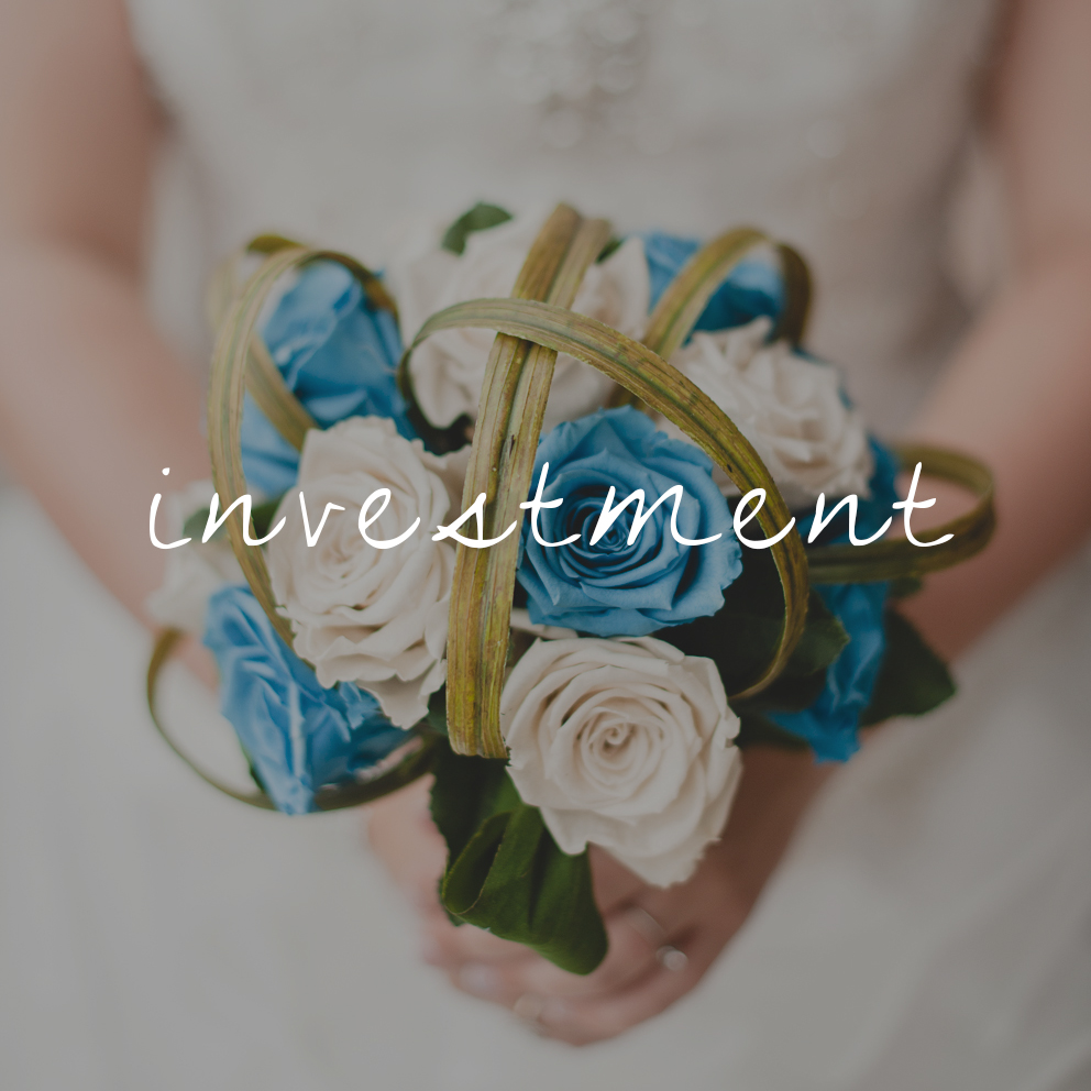 20140830-DSC_5599-invest.jpg