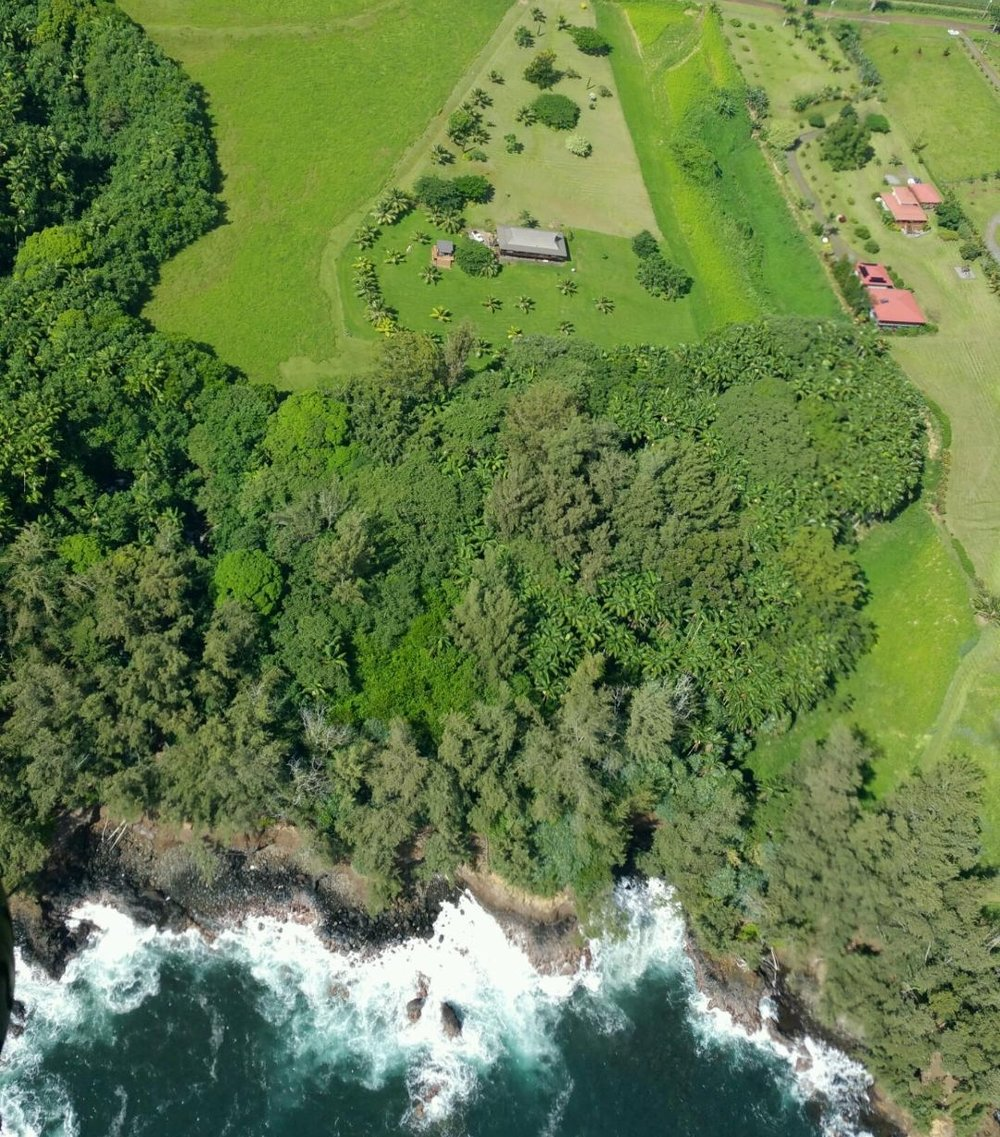 An aerial shot of the property that we will be staying at. We have access to our own secluded waterfall right near the ocean, plus many dwarf coconuts and avocados.  In addition, it is just a 15 minute drive to Hilo.