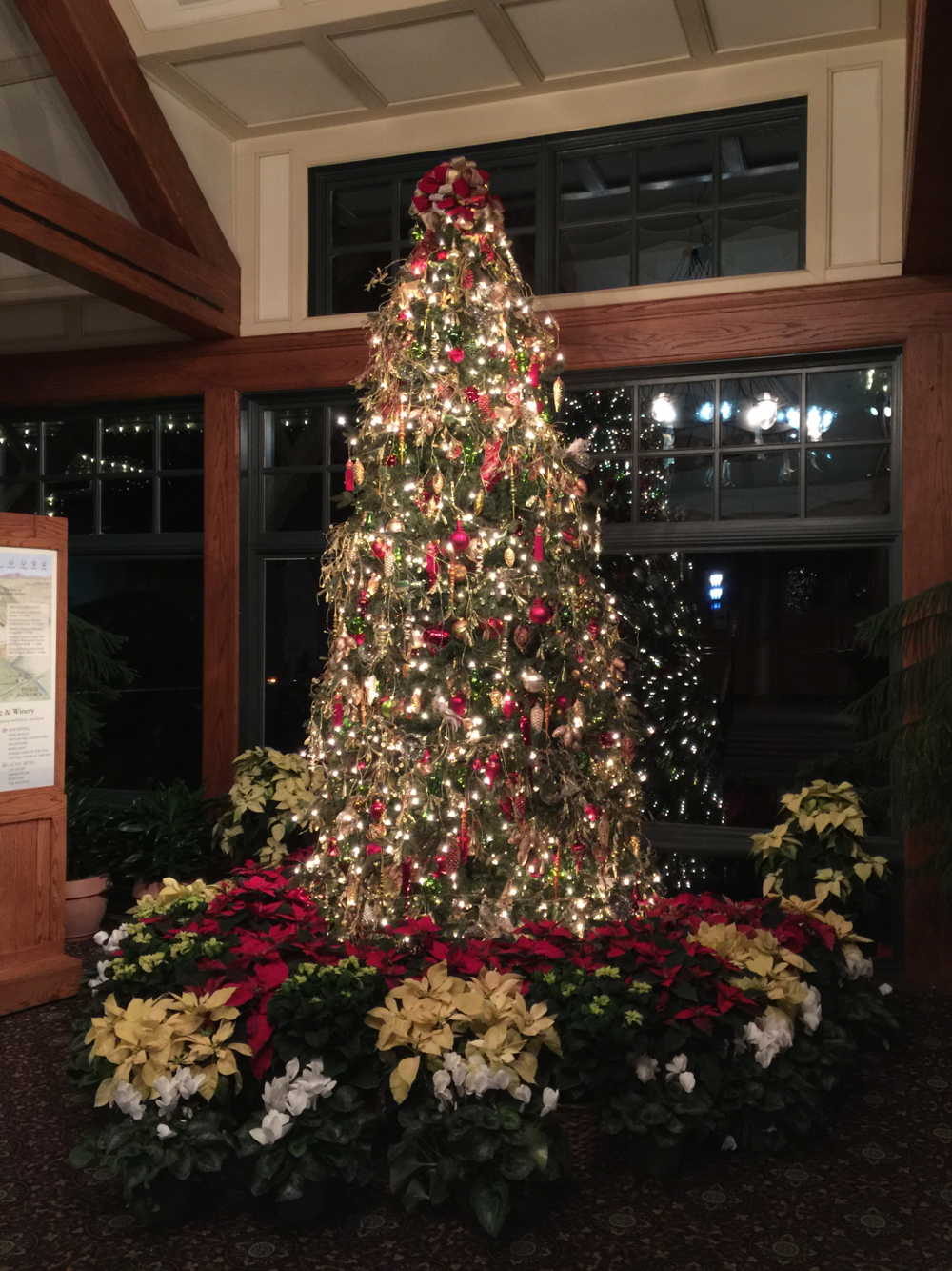 Biltmore Visitor Center Christmas tree (click to enlarge)