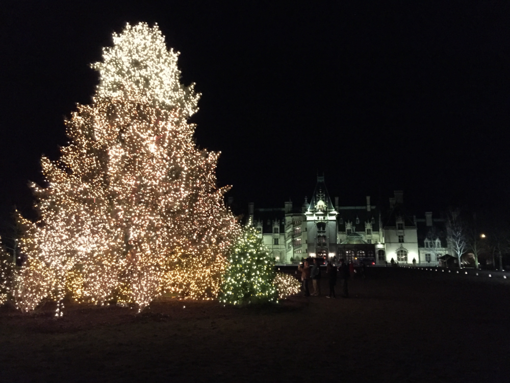 Biltmore House at Christmas (click to enlarge)