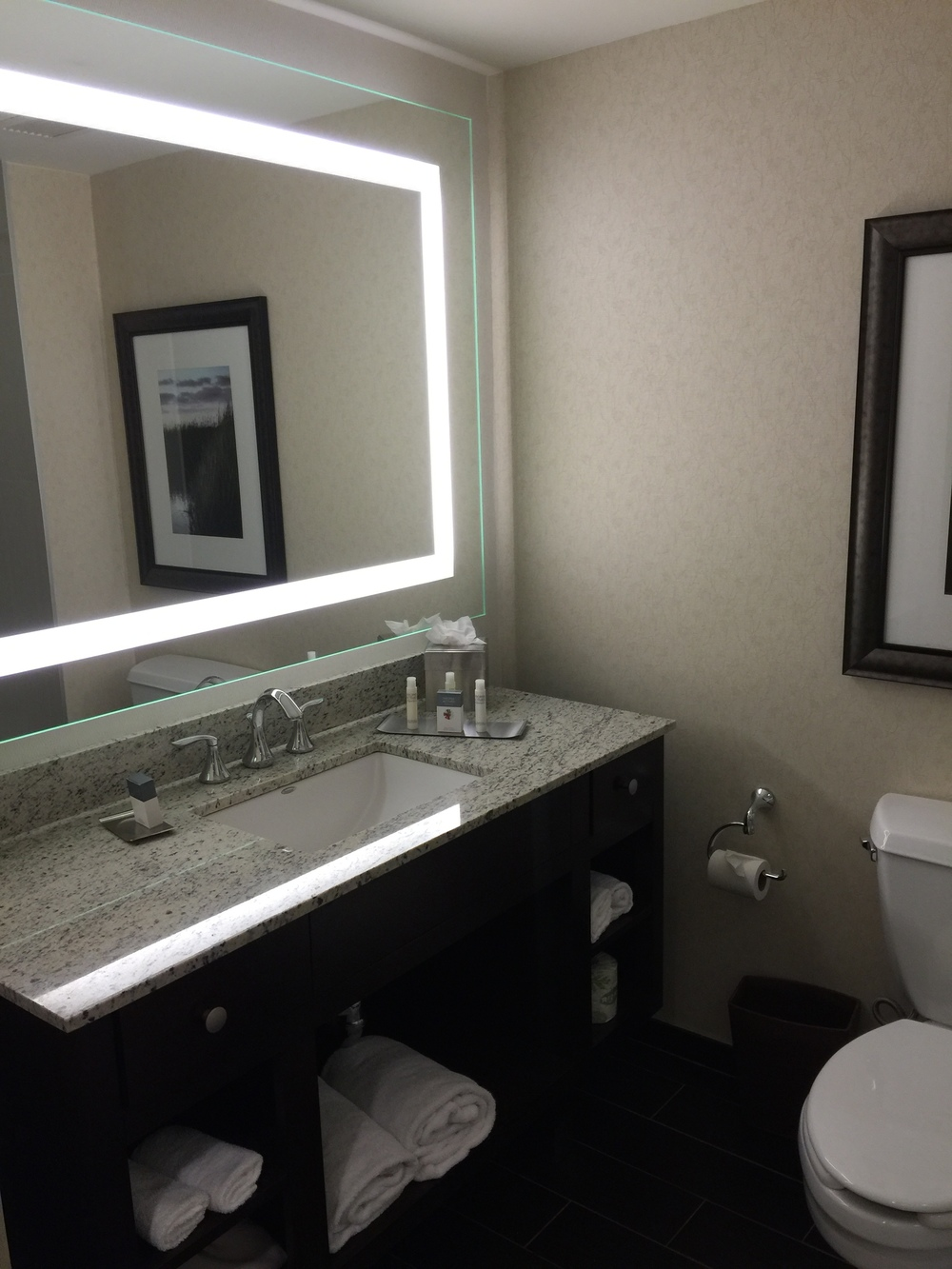 I really liked the light-surround in the bathroom!  (click to enlarge)