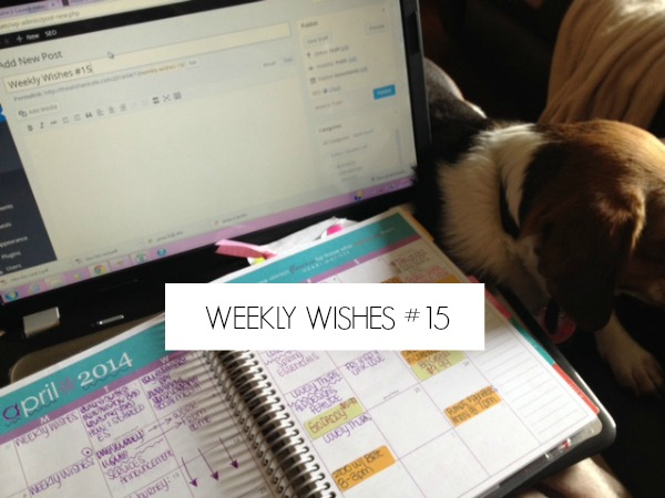WEEKLY-WISHES-15