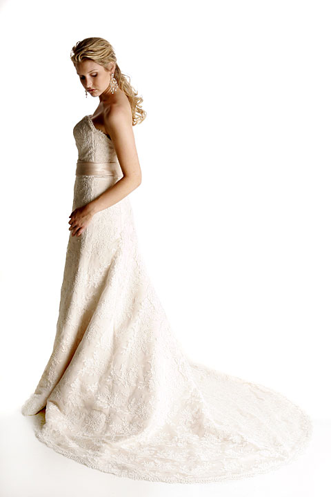All Alencon lace A-line, sweetheart strapless bodice, chapel train, sash in honey taffeta. Matching veil.