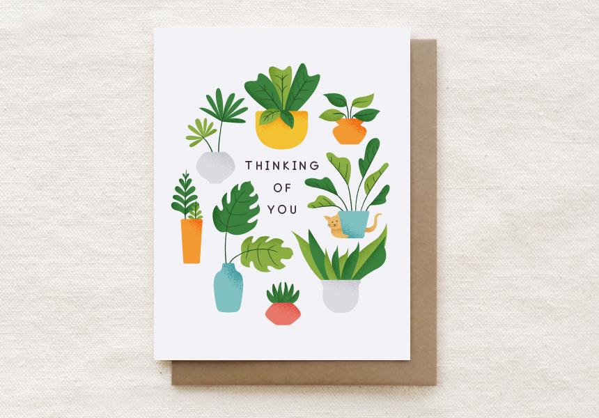 207-C: PLANTS