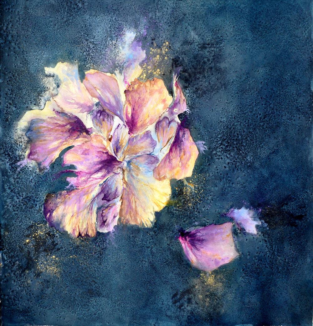 Blue Hibiscus 2