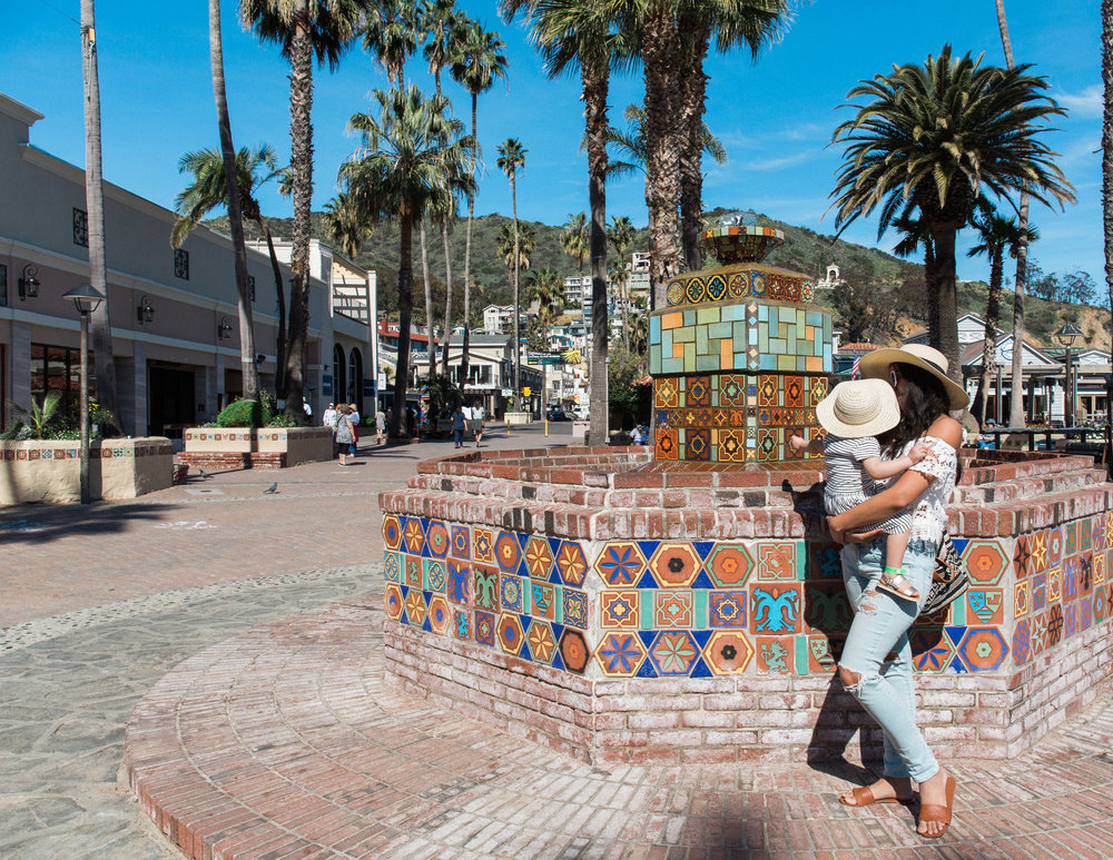 Santa Catalina Island | © Alexandria Whitefeather