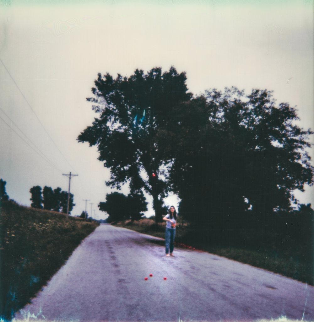 roadside apples.jpg
