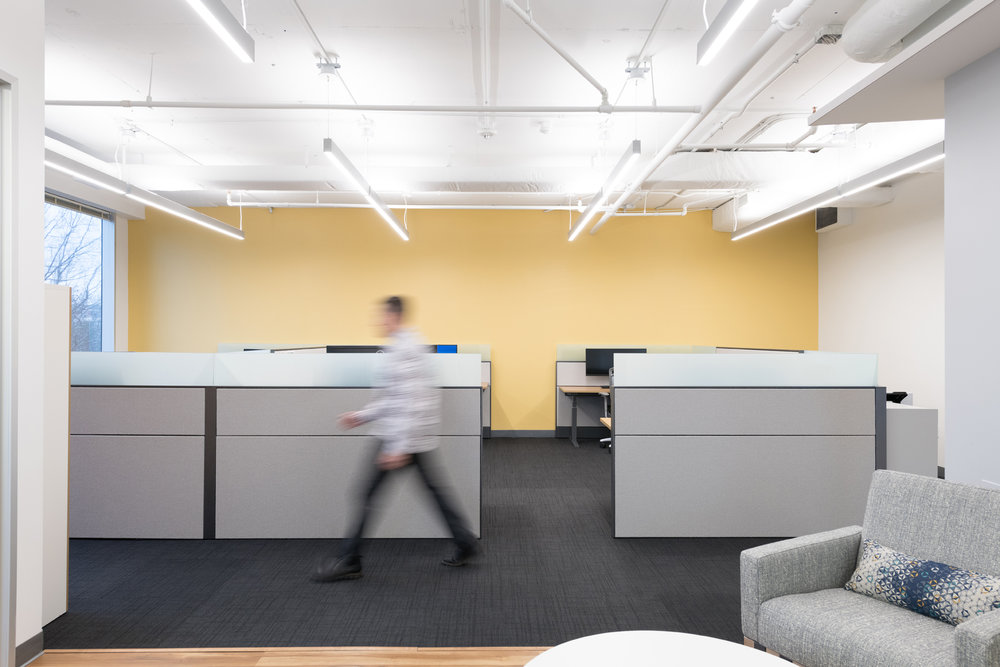 RestonOffice_CommercialDesign_cubicles_action.jpg