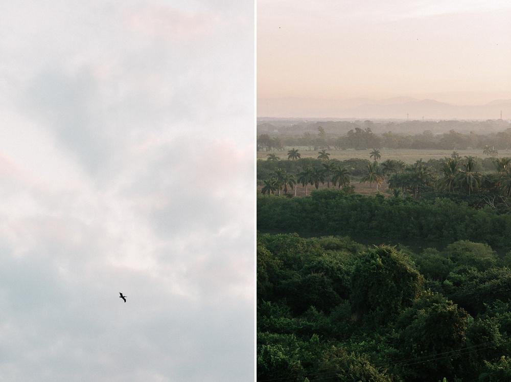 169-puerto-vallarta-seagull.jpg