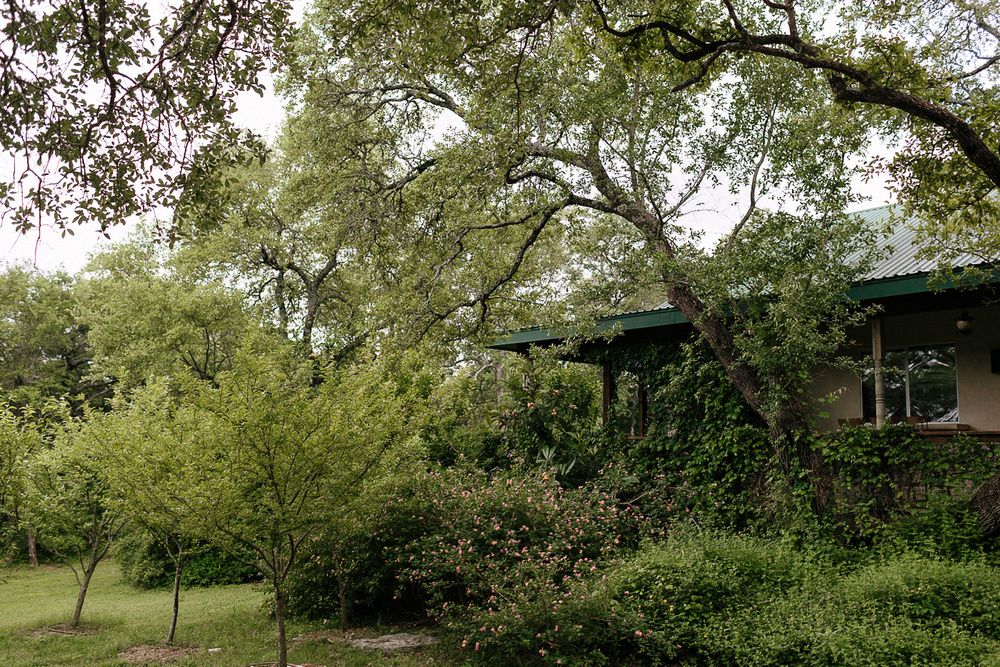 Wimberley Texas House and Peach Orchard