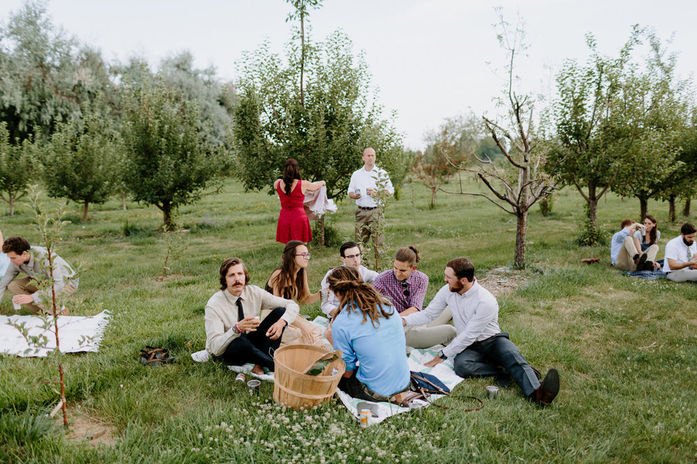 Ya Ya Farm and Orchard Wedding Reception Picnic