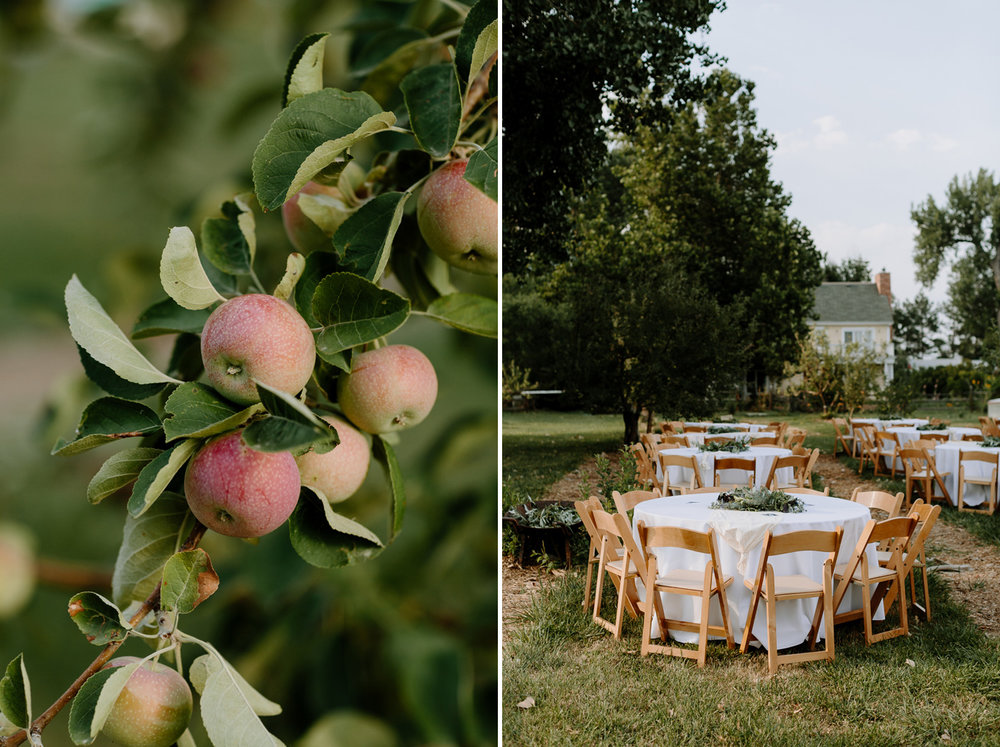 Ya Ya Farm and Orchard Apples Tables