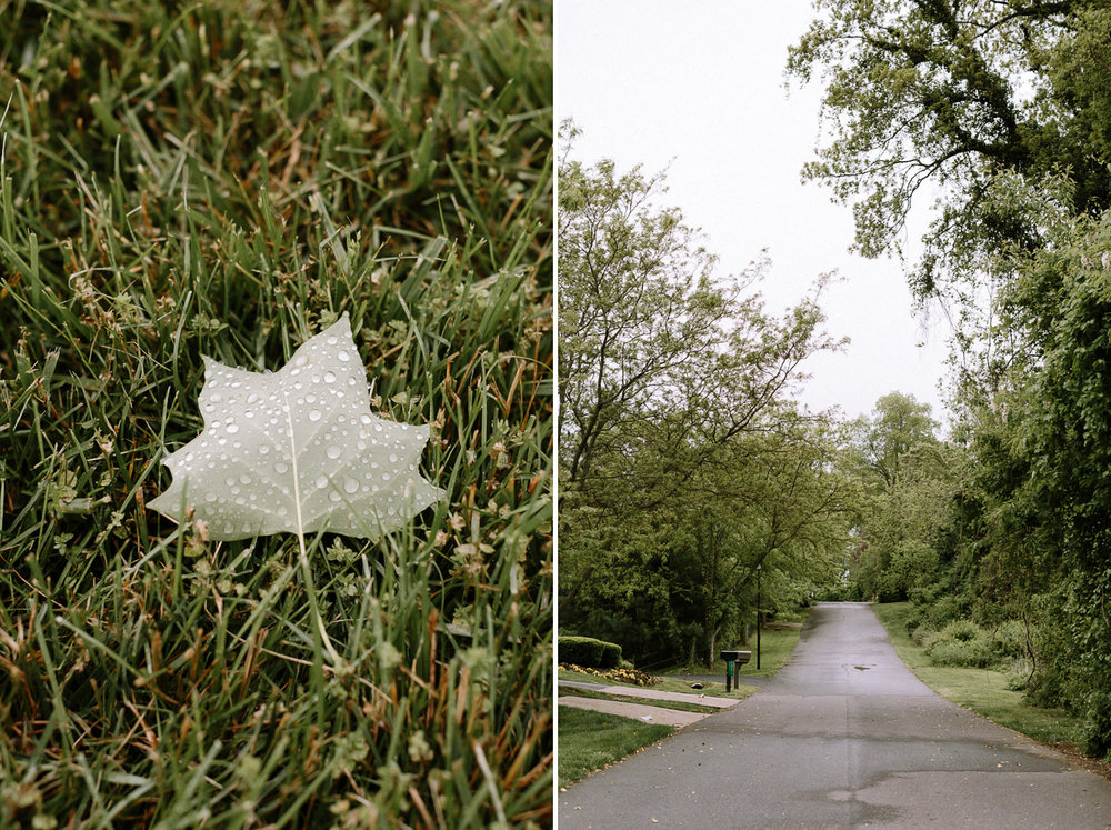 Annapolis-Maryland-Backyard-Wedding-Photographer-Hannah-Houston-10.jpg