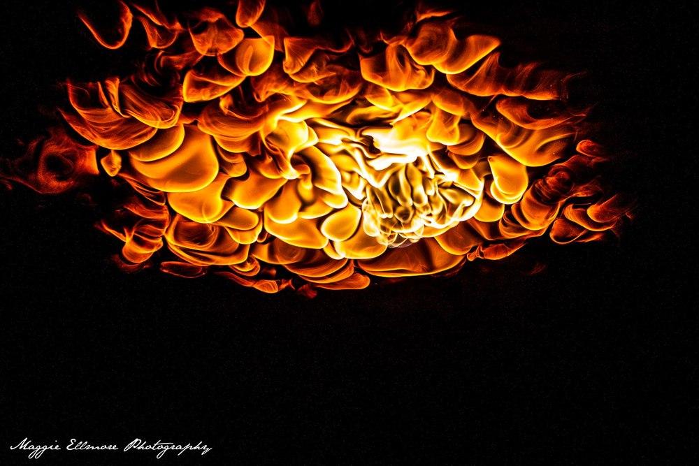 Incendia Gratifly Pic 3.jpg