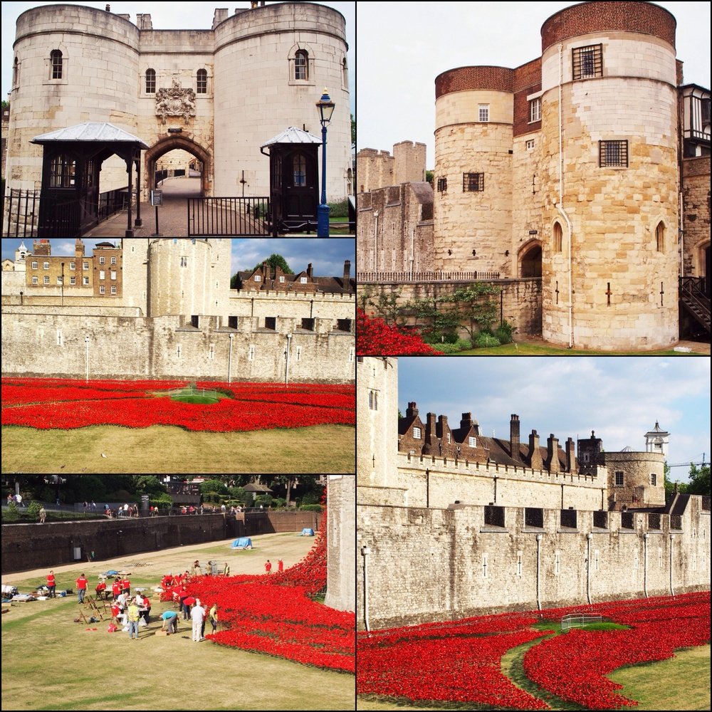 Tower of London and the installing of 'Blood swept lands and seas of red'