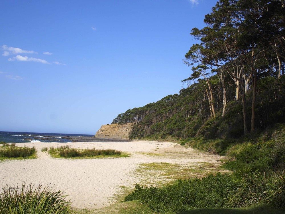 Depot Beach Headland.jpg