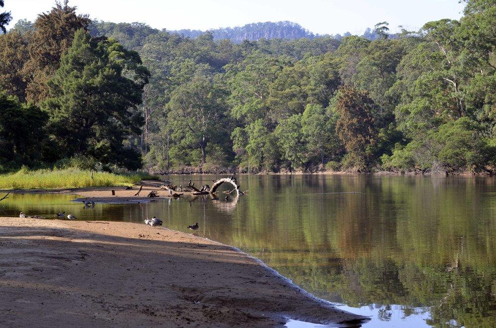 Up the Kangaroo River