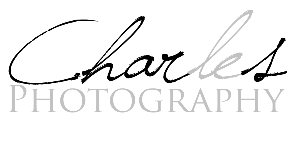 Wedding Photography, Portrait Photography | San Francisco, San Jose, Bay Area, CA