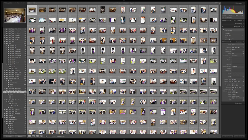 This is what 228 photographs in Lightroom looks like.