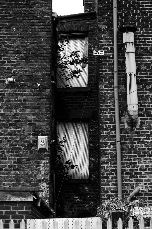 Andrew Wilson Photography Wavertree Liverpool (25).jpg