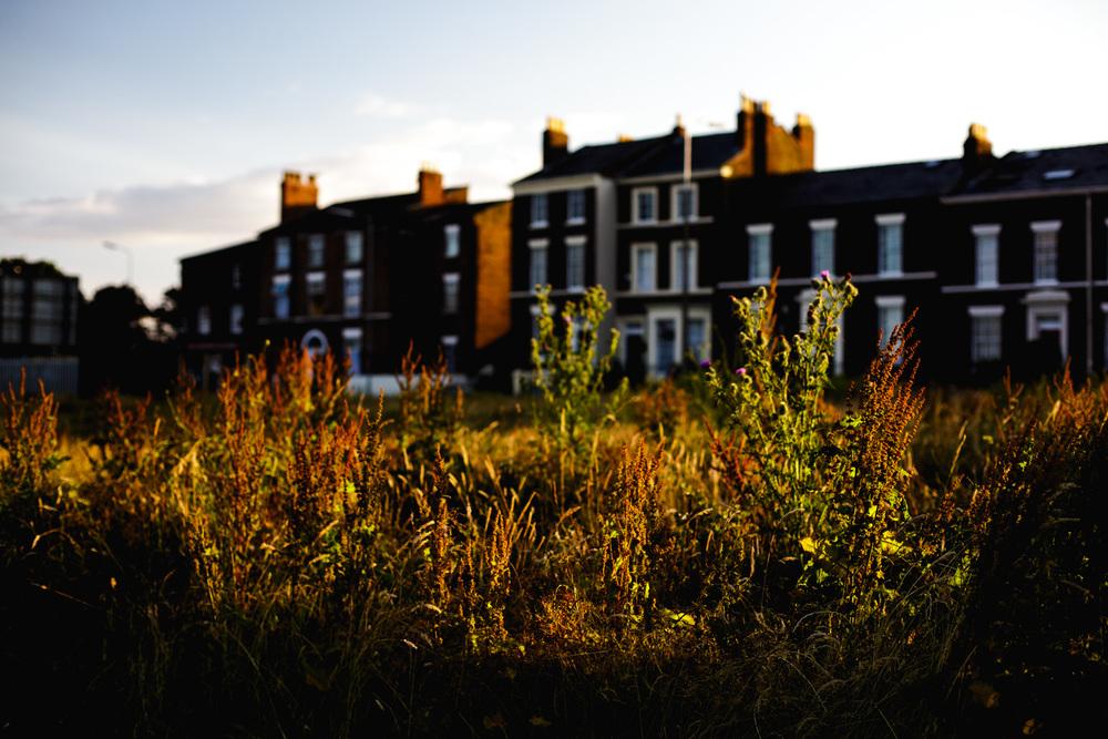 Andrew Wilson Photography Wavertree Liverpool (19).jpg