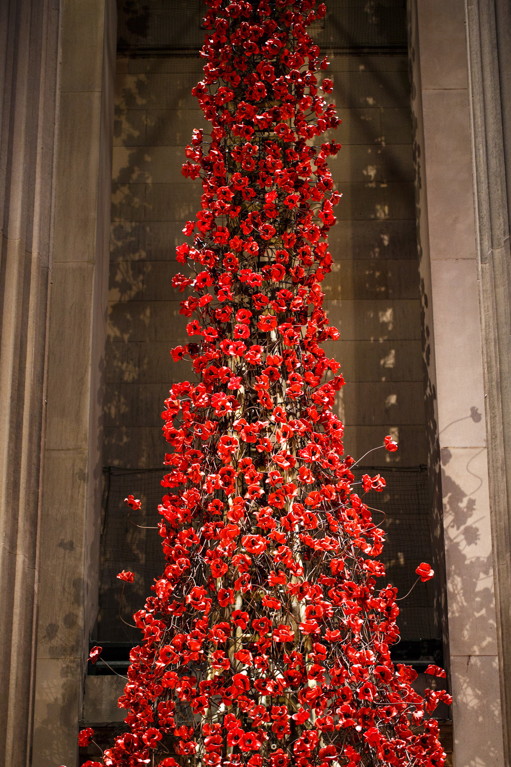 Weeping Window Paul Cummins Tom Piper Liverpool St.George's Hall Andrew Wilson Photography (20).jpg