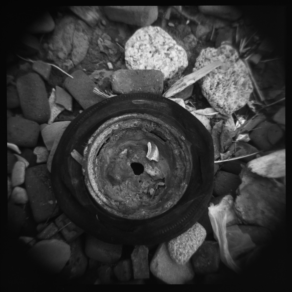 At Crosby I shot a roll of film on my Holga camera, resulting in these square photographs...