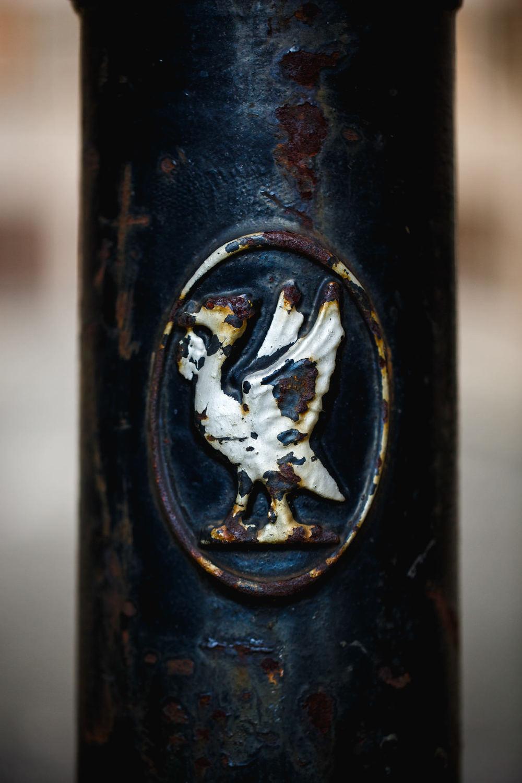 Andrew Wilson Photography Liverpool (17) Liver Bird.jpg