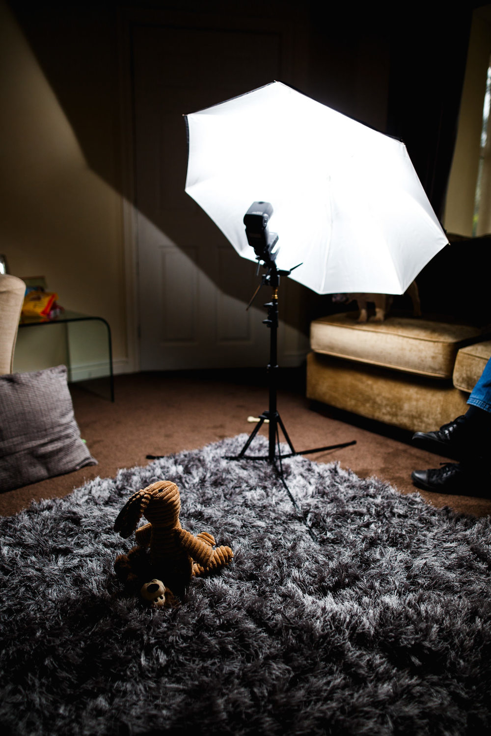 My (relatively) modest lighting equipment - a flash is wirelessly triggered from my camera, firing into my photo-umbrella which bounces back a softer quality of light.