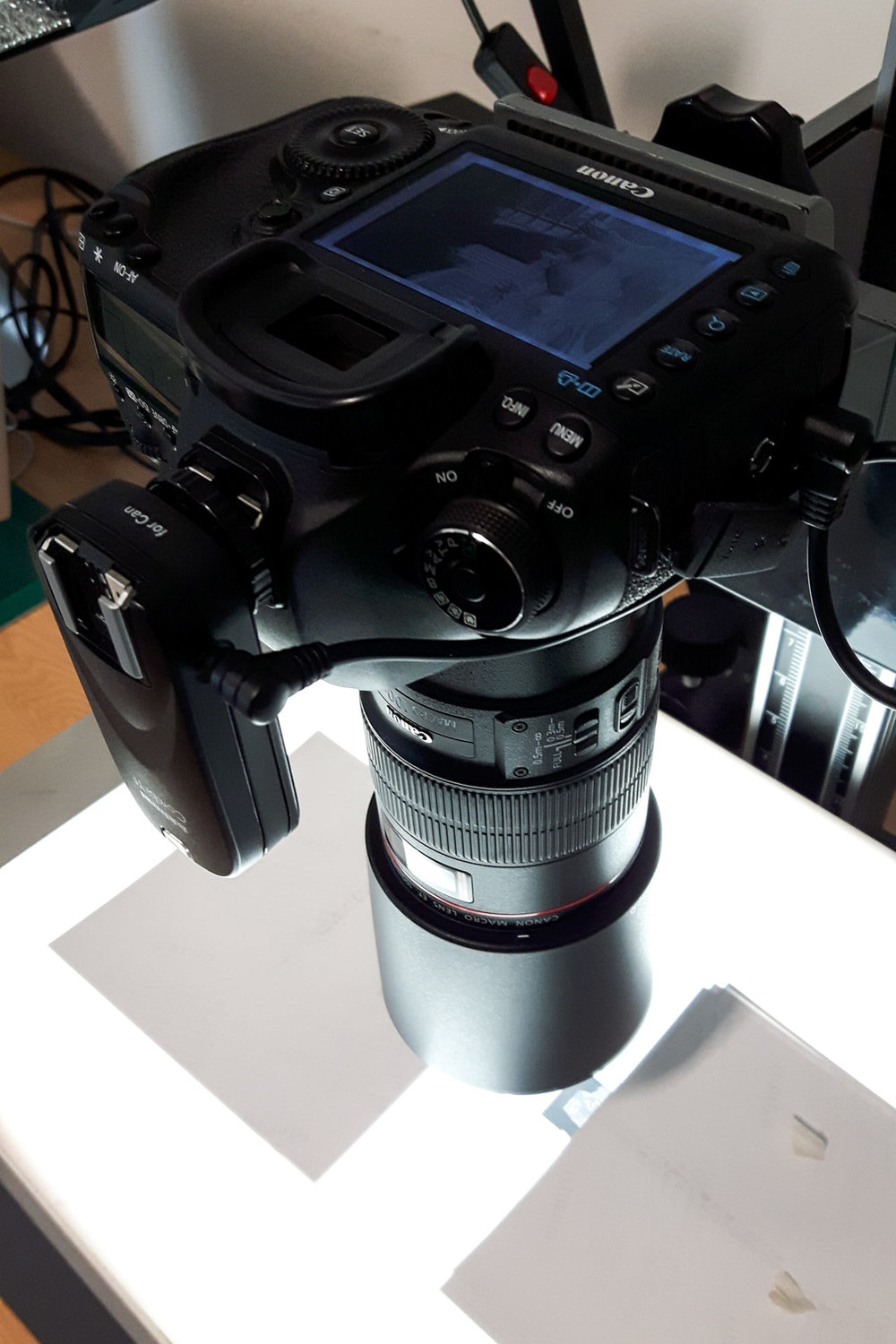This set up of my camera and macro lens, attached to an adjustable column, gives consistent results when photographing negatives. The lightbox illuminates the negative...