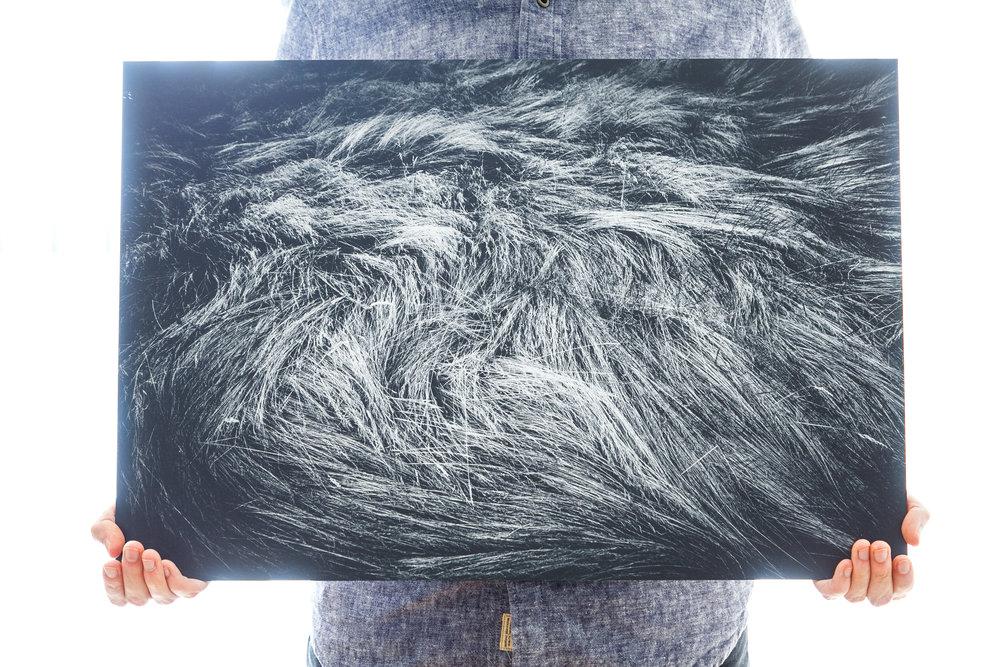 'Tufts' (60x40cm - £90)