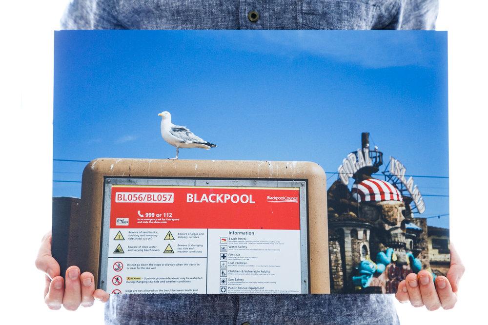 'A Seagull's Perch' (45x30cm - £70)