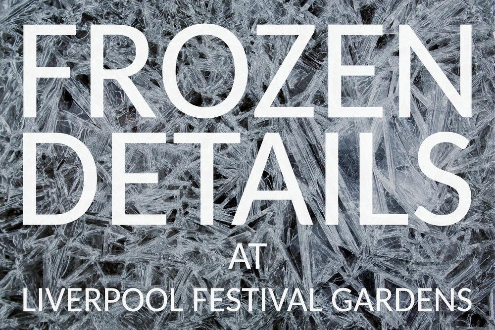 Frozen Details.jpg