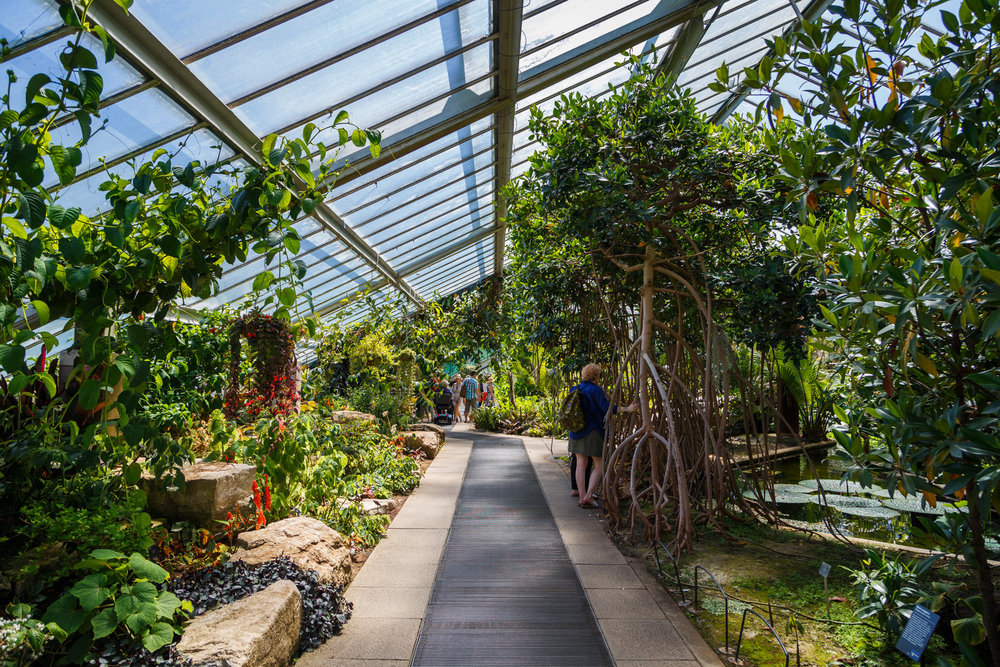 The Prince of Wales Conservatory.