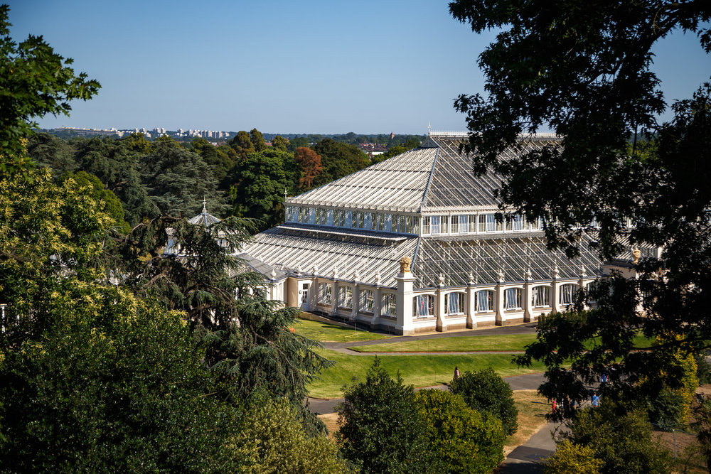 Looking towards the Temperate House.