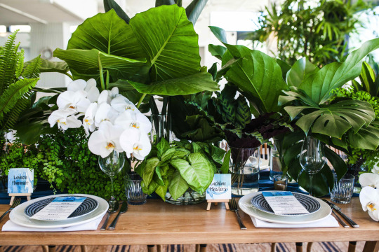 FloraFolk Wedding Florist Sydney Hello May Beachside Dojo 4