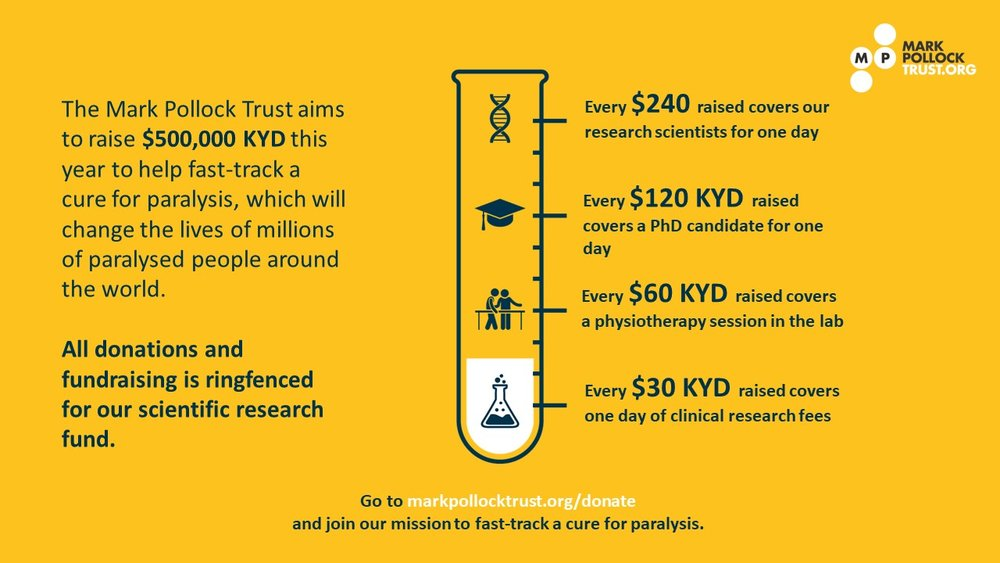 Fundraising infographic Cayman Dollars.jpg
