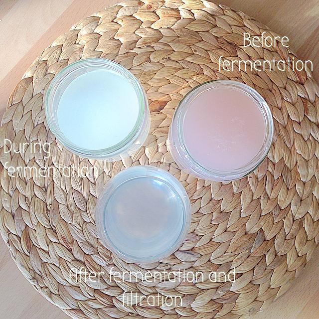 Coconut water kefir recipe