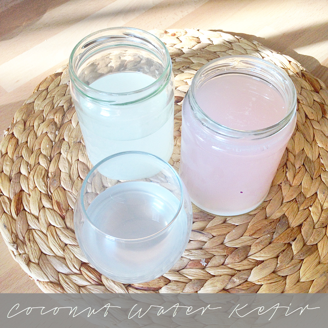 Coconut Water Kefir Recipe - How to make coconut water kefir