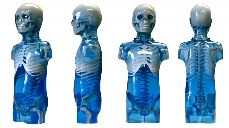 Paediatric Anthropomorphic Training Phantoms 'SPORT', Model 715     Represents average 5-year old in shape, proportion, size and structure. Use for training and improvements in paediatric film radiography, CR, DR & CT including patient positioning, collimation and anatomical comprehension. Can custom manufacture pathologies.
