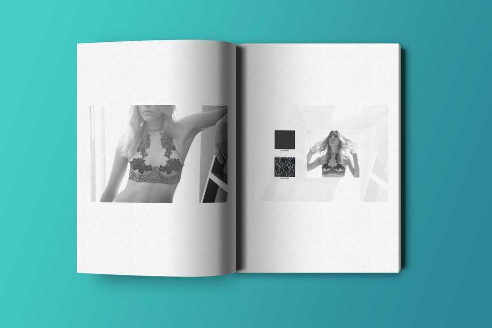 Book_p3_aug16.jpg
