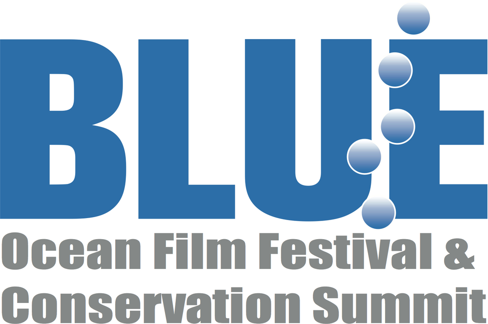 2014 BLUE Logo Summit vector.jpg