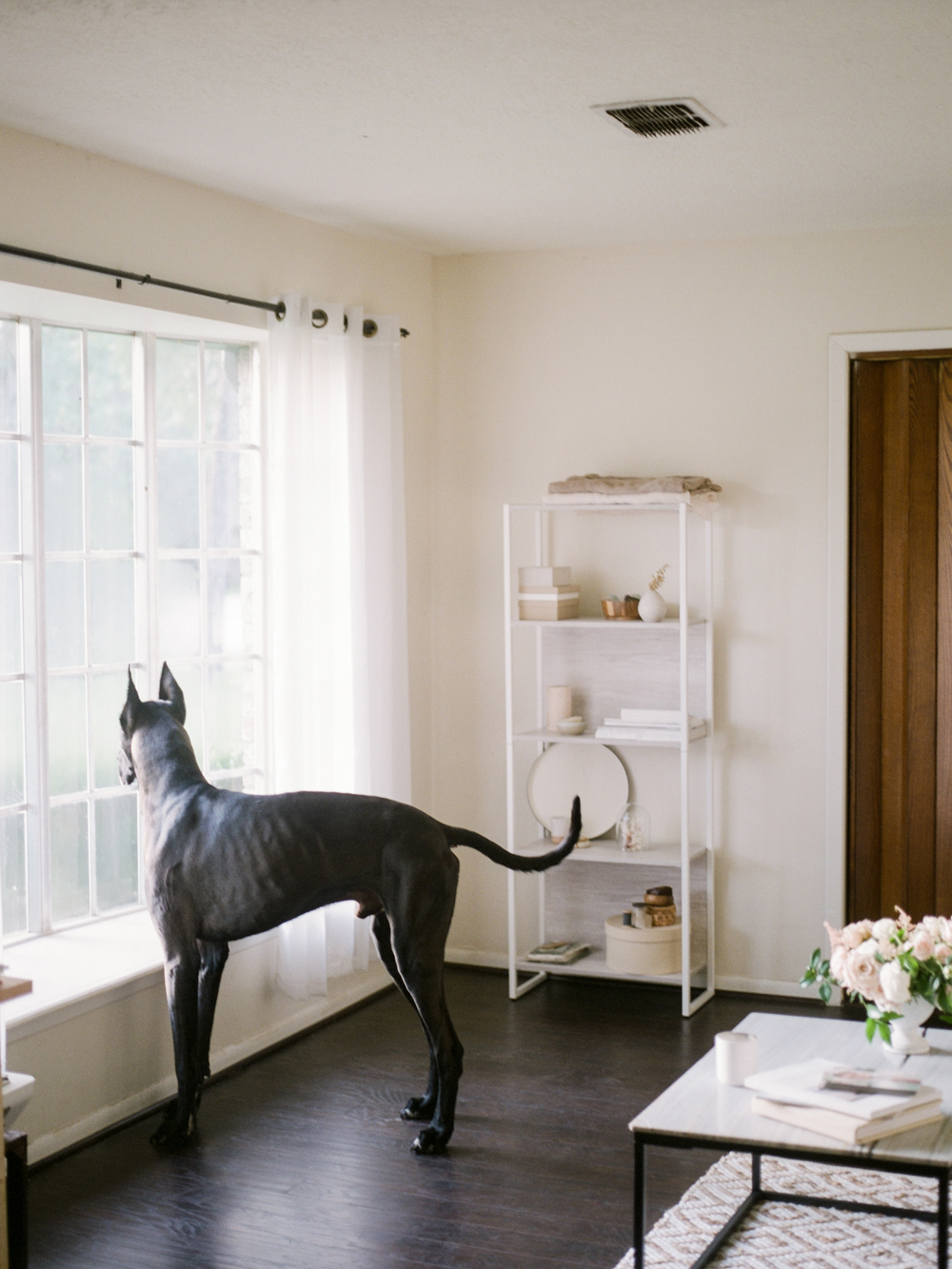 Houston wedding photographers - Houston product photography - Christine Gosch - minimalist office inspiration - film photographer-4.jpg
