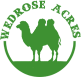 logoongreen.png