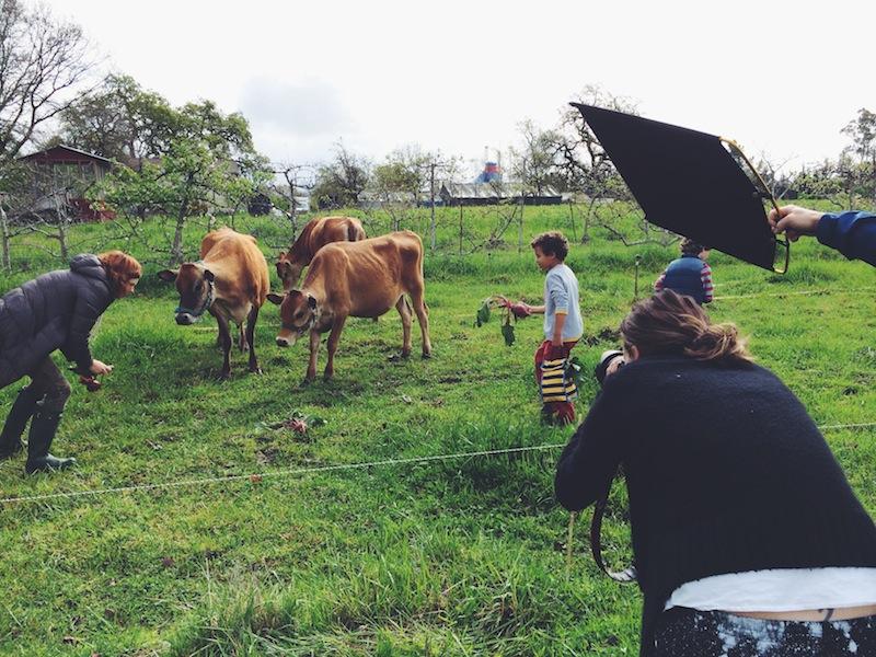 hanna-andersson-behind-the-scenes-summerfieldwaldorfshoot-image10