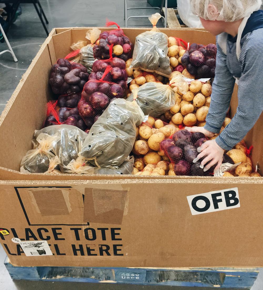 Hanna Volunteers Oregon Food Bank THE HANNA BLOG